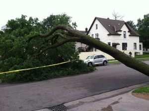 A block in South Minneapolis after Friday's storm.