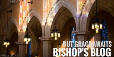 bishops-blog-8